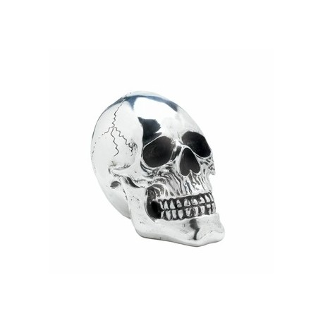 Shining Silver Skull