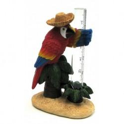 Parrot Rain Gauge