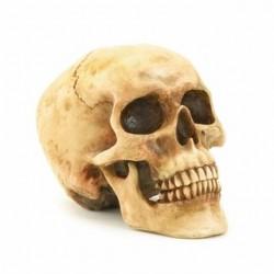Grinning Skull Figurine